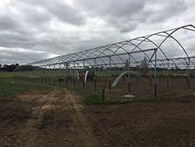 Shelter in progress