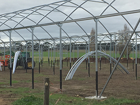 Shelter arches go up on to poles